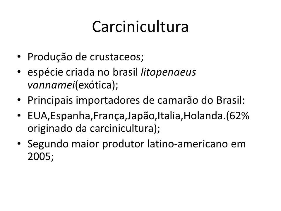 Carcinicultura Produção de crustaceos; espécie criada no brasil litopenaeus vannamei(exótica); Principais importadores de camarão do Brasil: EUA,Espan
