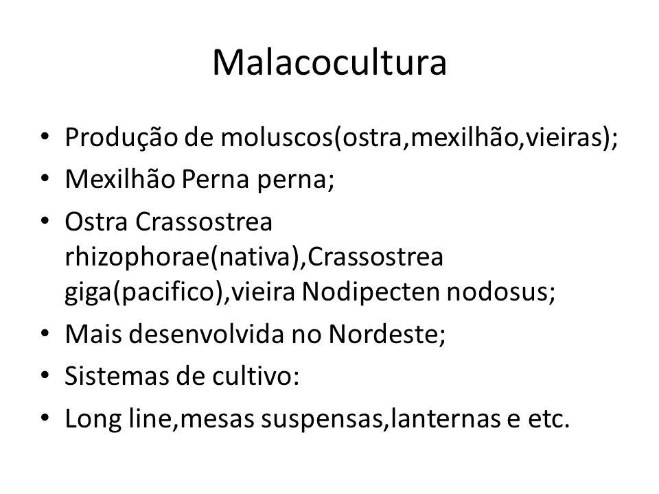 Malacocultura Produção de moluscos(ostra,mexilhão,vieiras); Mexilhão Perna perna; Ostra Crassostrea rhizophorae(nativa),Crassostrea giga(pacifico),vie