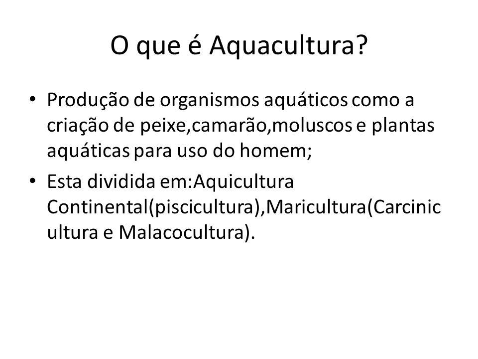 O que é Aquacultura? Produção de organismos aquáticos como a criação de peixe,camarão,moluscos e plantas aquáticas para uso do homem; Esta dividida em