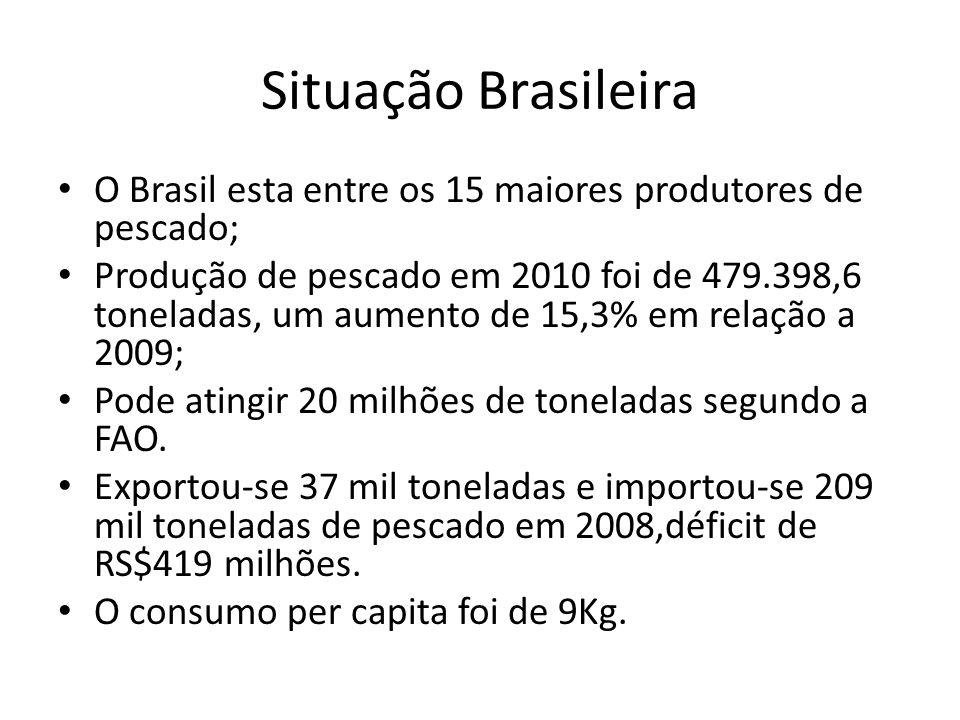 Situação Brasileira O Brasil esta entre os 15 maiores produtores de pescado; Produção de pescado em 2010 foi de 479.398,6 toneladas, um aumento de 15,
