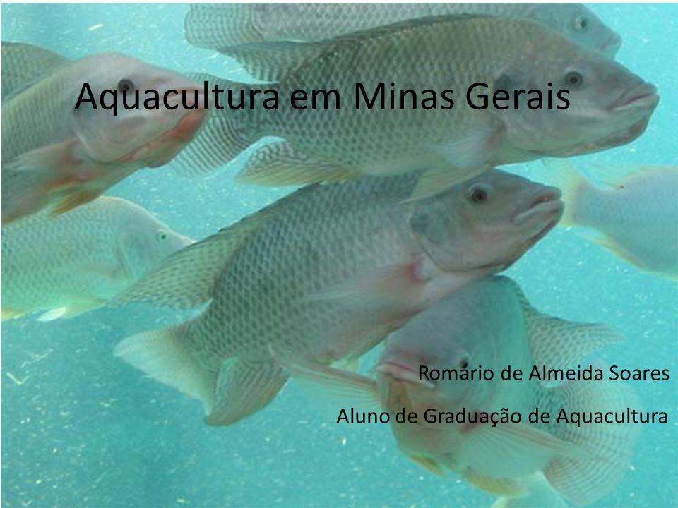 Aquacultura em Minas Gerais Romário de Almeida Soares Aluno de Graduação de Aquacultura