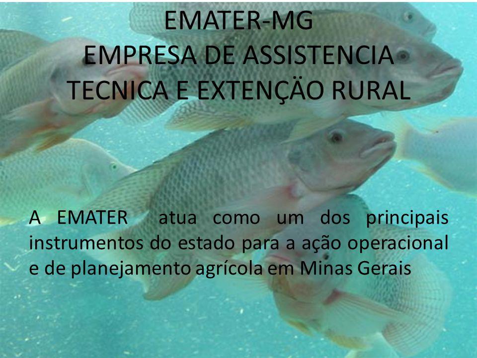 EMATER-MG EMPRESA DE ASSISTENCIA TECNICA E EXTENÇÄO RURAL A EMATER atua como um dos principais instrumentos do estado para a ação operacional e de planejamento agrícola em Minas Gerais