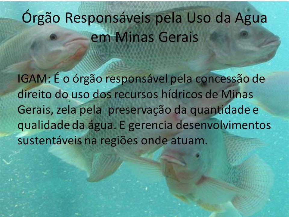 Órgão Responsáveis pela Uso da Agua em Minas Gerais IGAM: É o órgão responsável pela concessão de direito do uso dos recursos hídricos de Minas Gerais, zela pela preservação da quantidade e qualidade da água.