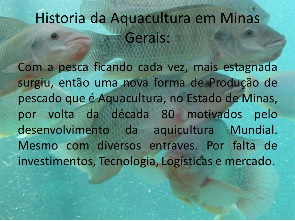 Historia da Aquacultura em Minas Gerais: Com a pesca ficando cada vez, mais estagnada surgiu, então uma nova forma de Produção de pescado que é Aquacultura, no Estado de Minas, por volta da década 80 motivados pelo desenvolvimento da aquicultura Mundial.