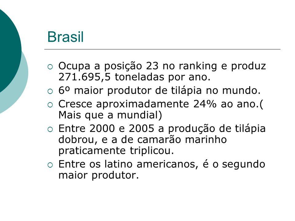 Brasil Ocupa a posição 23 no ranking e produz 271.695,5 toneladas por ano. 6º maior produtor de tilápia no mundo. Cresce aproximadamente 24% ao ano.(