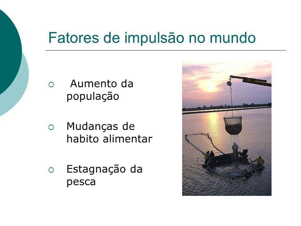 Fatores de impulsão no mundo Aumento da população Mudanças de habito alimentar Estagnação da pesca