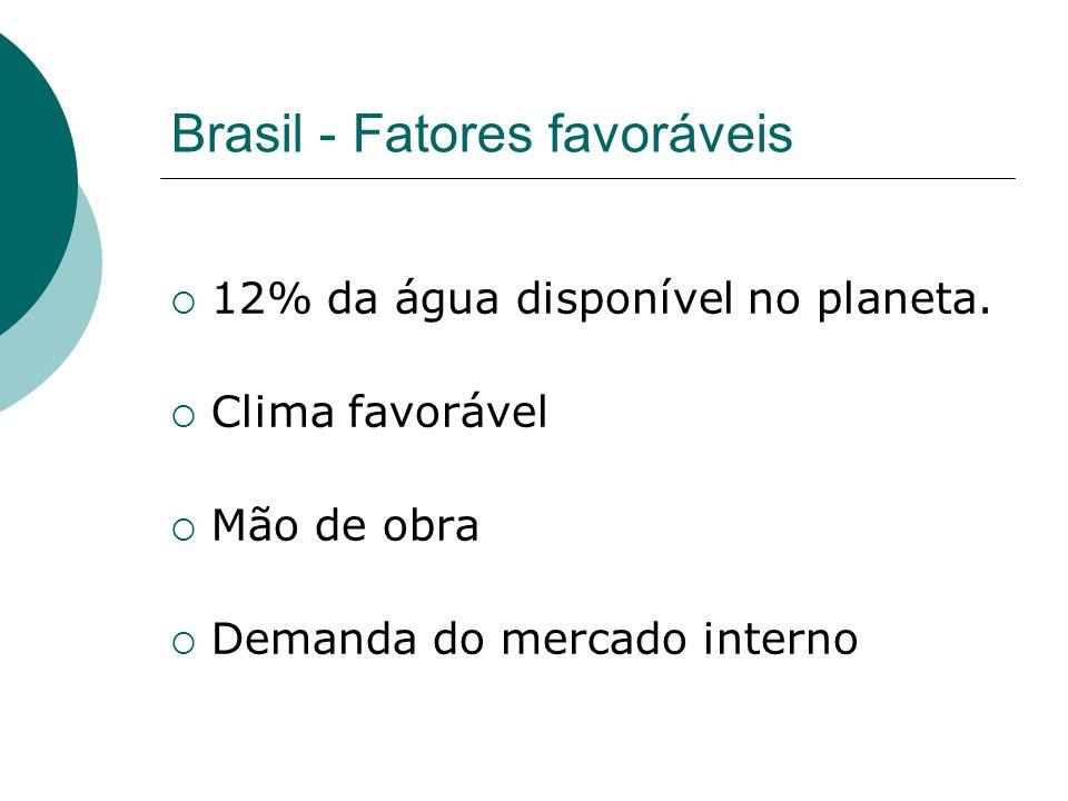 Brasil - Fatores favoráveis 12% da água disponível no planeta. Clima favorável Mão de obra Demanda do mercado interno