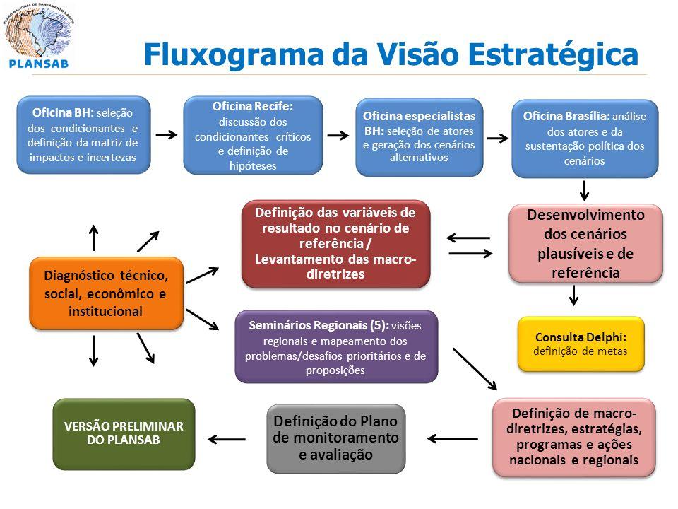 Fluxograma da Visão Estratégica Seminários Regionais (5): visões regionais e mapeamento dos problemas/desafios prioritários e de proposições Consulta