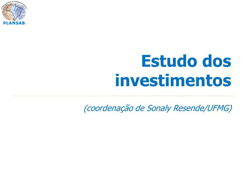 Estudo dos investimentos (coordenação de Sonaly Resende/UFMG)
