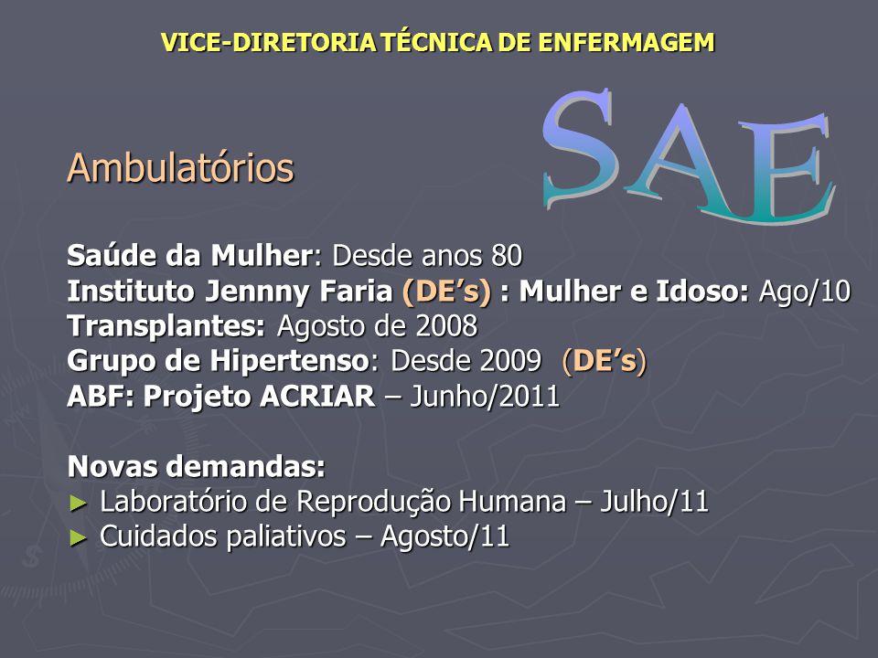 VICE-DIRETORIA TÉCNICA DE ENFERMAGEM Fevereiro de 2011 Subprojeto: Consolidação...