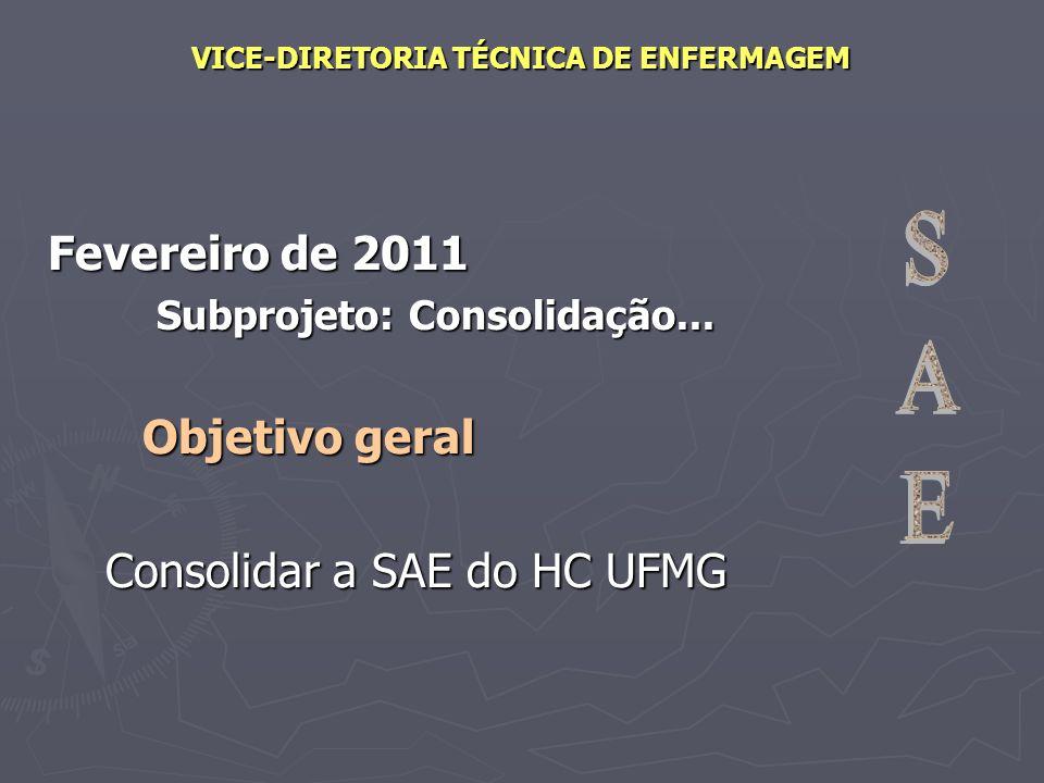 VICE-DIRETORIA TÉCNICA DE ENFERMAGEM Fevereiro de 2011 Subprojeto: Consolidação... Objetivo geral Objetivo geral Consolidar a SAE do HC UFMG Consolida