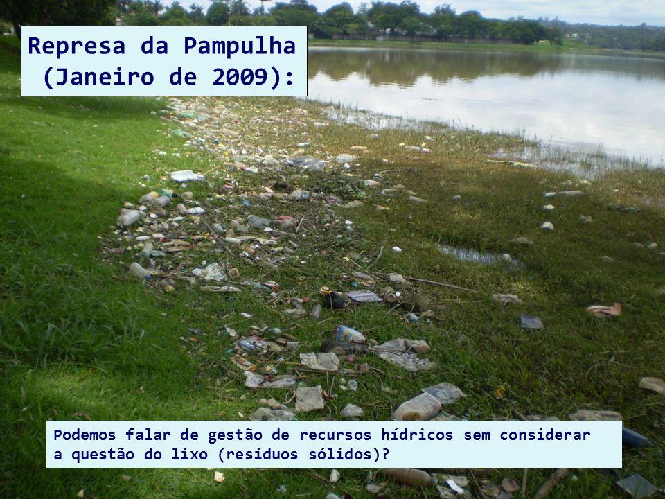 Podemos falar de gestão de recursos hídricos sem considerar a questão do lixo (resíduos sólidos)? Represa da Pampulha (Janeiro de 2009):