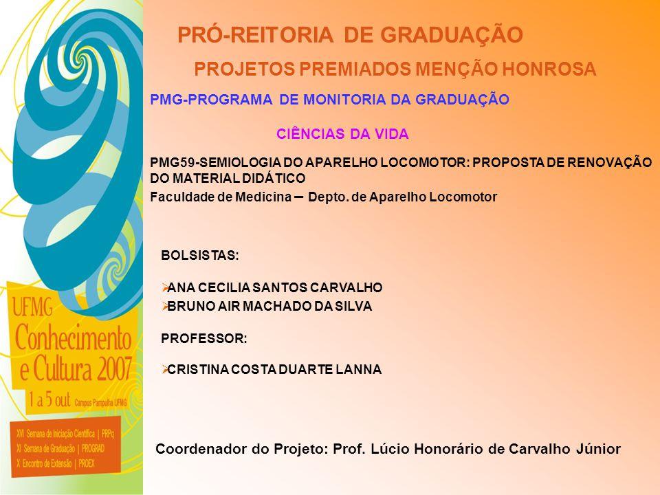 UFMG - Universidade Federal de Minas Gerais PRÓ-REITORIA DE GRADUAÇÃO PROJETOS PREMIADOS MENÇÃO HONROSA PMG-PROGRAMA DE MONITORIA DA GRADUAÇÃO PMG59-S