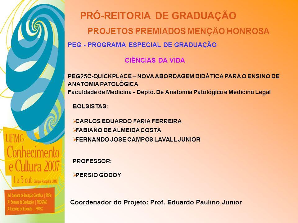 UFMG - Universidade Federal de Minas Gerais PRÓ-REITORIA DE GRADUAÇÃO PROJETOS PREMIADOS MENÇÃO HONROSA PEG - PROGRAMA ESPECIAL DE GRADUAÇÃO PEG25C-QU