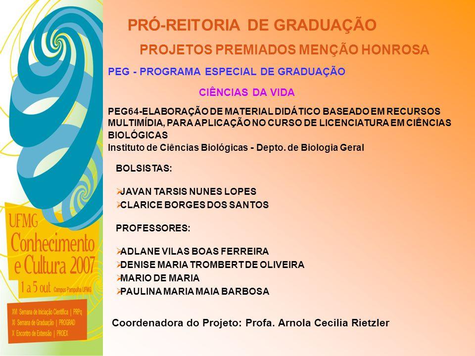 UFMG - Universidade Federal de Minas Gerais PRÓ-REITORIA DE GRADUAÇÃO PROJETOS PREMIADOS MENÇÃO HONROSA PEG - PROGRAMA ESPECIAL DE GRADUAÇÃO PEG64-ELA