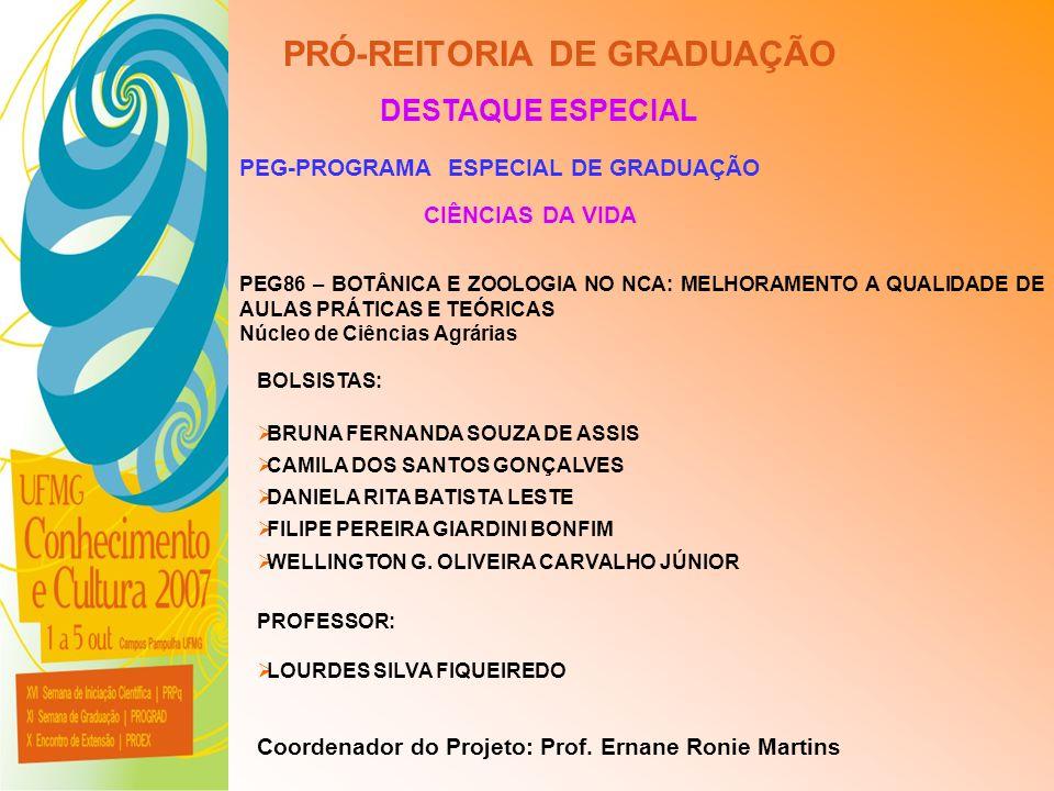 UFMG - Universidade Federal de Minas Gerais PRÓ-REITORIA DE GRADUAÇÃO DESTAQUE ESPECIAL PEG-PROGRAMA ESPECIAL DE GRADUAÇÃO CIÊNCIAS DA VIDA PEG86 – BO