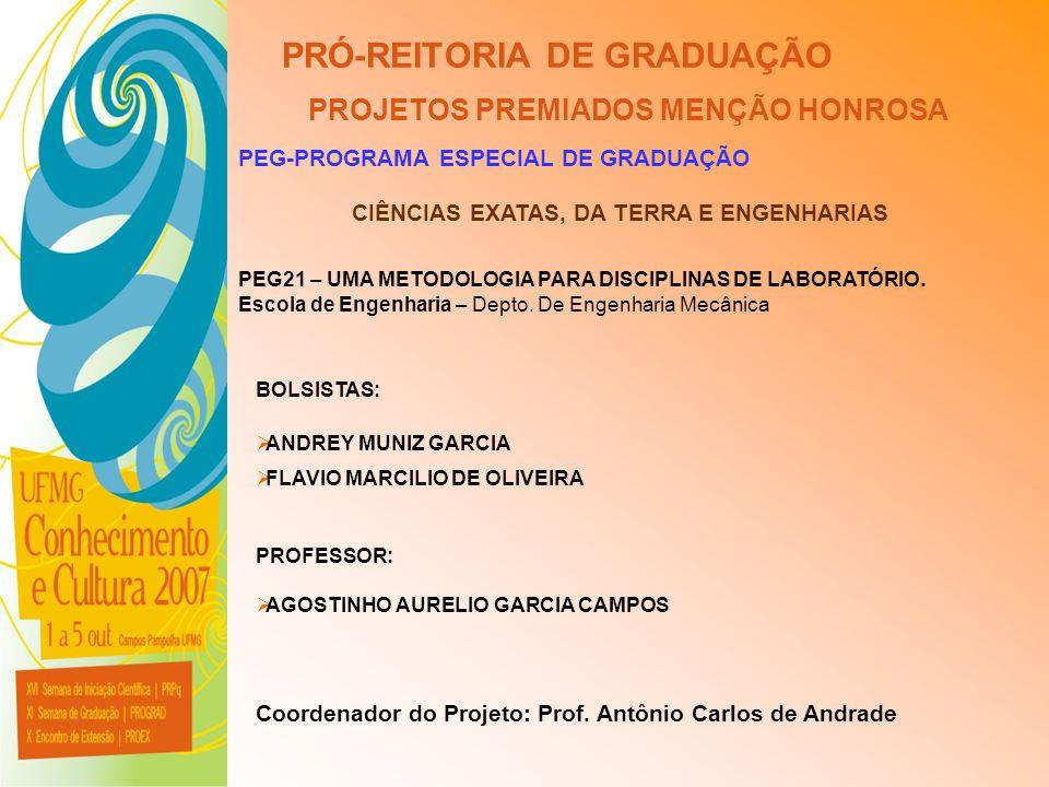UFMG - Universidade Federal de Minas Gerais PRÓ-REITORIA DE GRADUAÇÃO PROJETOS PREMIADOS MENÇÃO HONROSA PEG-PROGRAMA ESPECIAL DE GRADUAÇÃO PEG21 – UMA