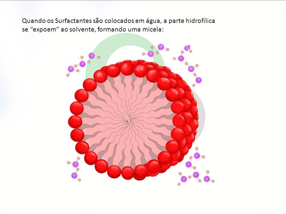 Quando os Surfactantes são colocados em água, a parte hidrofílica se expoem ao solvente, formando uma micela: