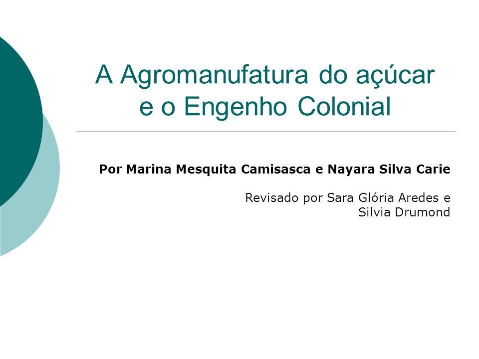 A Agromanufatura do açúcar e o Engenho Colonial Por Marina Mesquita Camisasca e Nayara Silva Carie Revisado por Sara Glória Aredes e Silvia Drumond