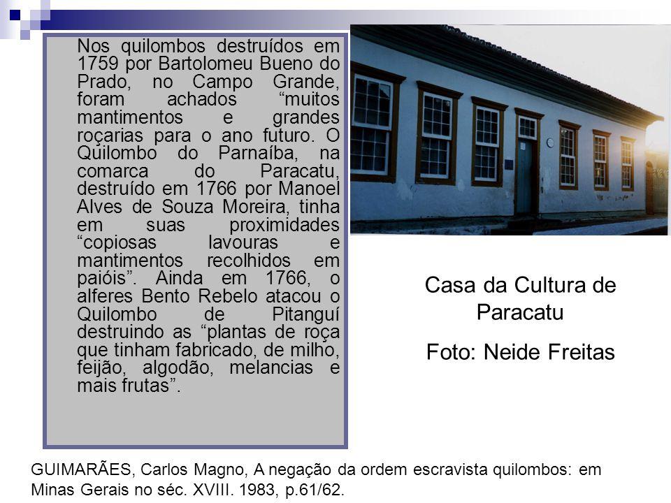 Nos quilombos destruídos em 1759 por Bartolomeu Bueno do Prado, no Campo Grande, foram achados muitos mantimentos e grandes roçarias para o ano futuro
