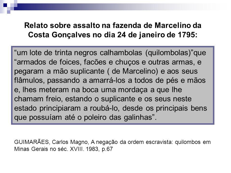Relato sobre assalto na fazenda de Marcelino da Costa Gonçalves no dia 24 de janeiro de 1795: um lote de trinta negros calhambolas (quilombolas)que ar