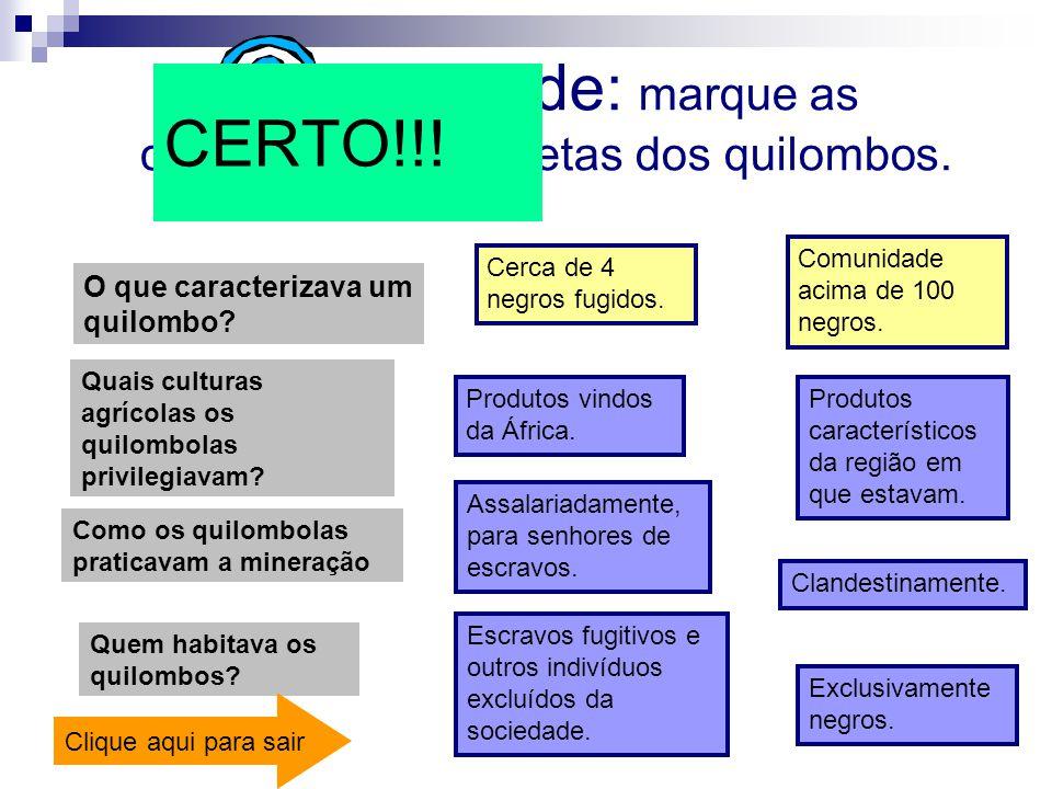 Quem habitava os quilombos? Atividade: marque as características corretas dos quilombos. O que caracterizava um quilombo? Cerca de 4 negros fugidos. C