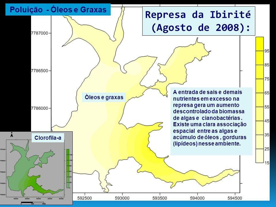 Represa da Ibirité (Agosto de 2008): A entrada de sais e demais nutrientes em excesso na represa gera um aumento descontrolado da biomassa de algas e