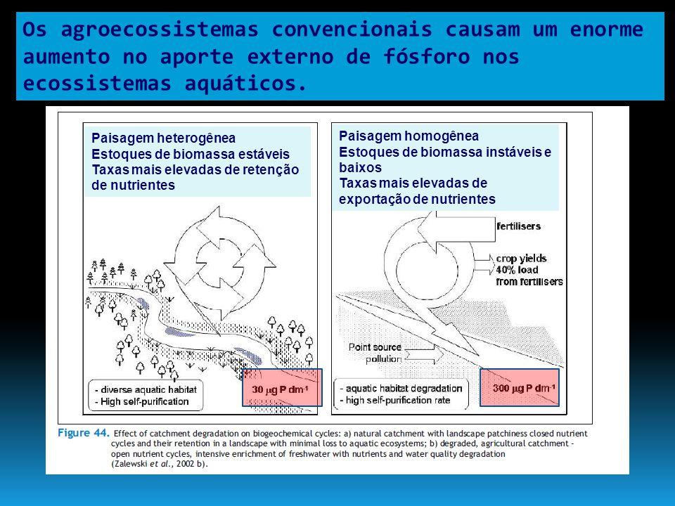 Os agroecossistemas convencionais causam um enorme aumento no aporte externo de fósforo nos ecossistemas aquáticos. Paisagem heterogênea Estoques de b