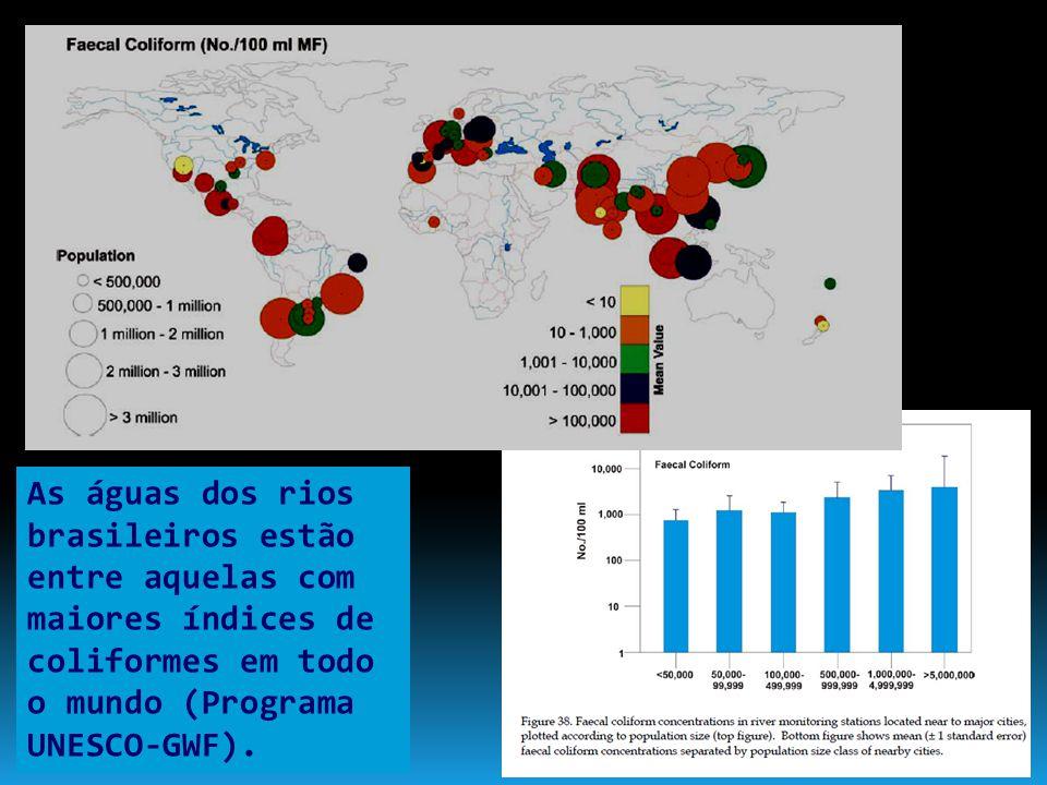 As águas dos rios brasileiros estão entre aquelas com maiores índices de coliformes em todo o mundo (Programa UNESCO-GWF).