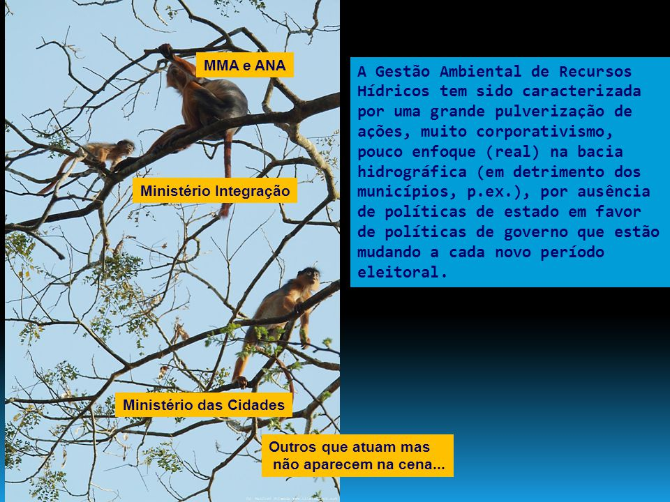 MMA e ANA Ministério das Cidades Ministério Integração Outros que atuam mas não aparecem na cena... A Gestão Ambiental de Recursos Hídricos tem sido c
