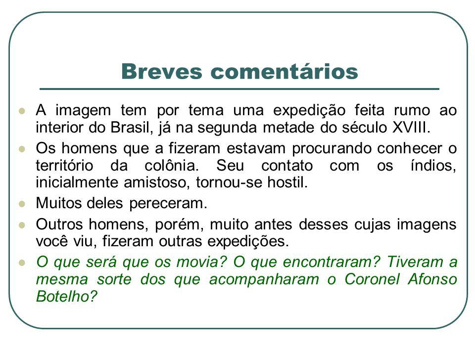 Breves comentários A imagem tem por tema uma expedição feita rumo ao interior do Brasil, já na segunda metade do século XVIII. Os homens que a fizeram
