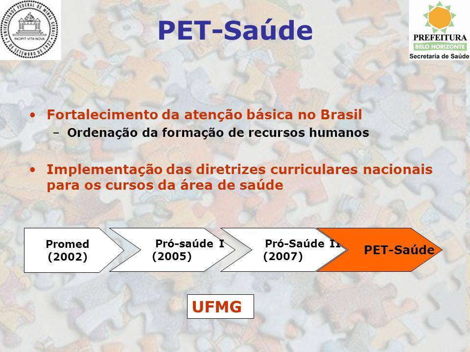 PET-Saúde Fortalecimento da atenção básica no Brasil –Ordenação da formação de recursos humanos Implementação das diretrizes curriculares nacionais pa