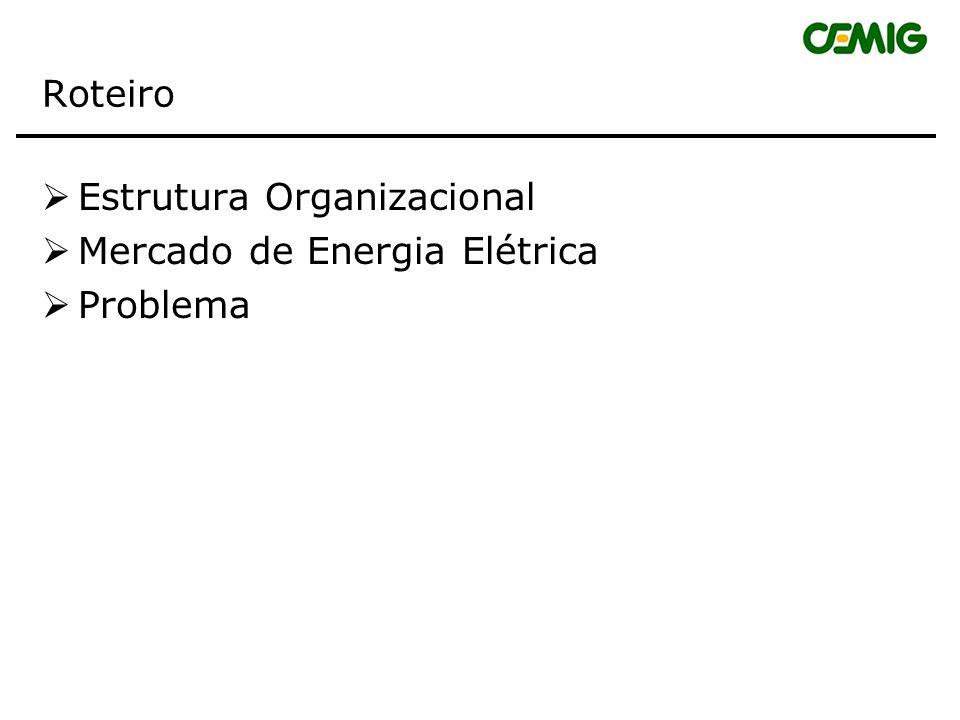 Roteiro Estrutura Organizacional Mercado de Energia Elétrica Problema