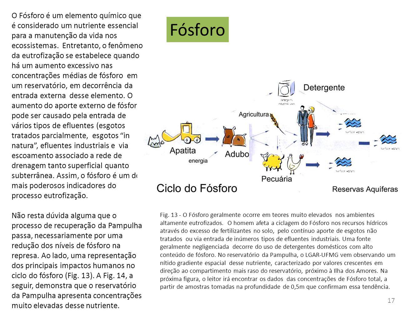 Fósforo O Fósforo é um elemento químico que é considerado um nutriente essencial para a manutenção da vida nos ecossistemas. Entretanto, o fenômeno da