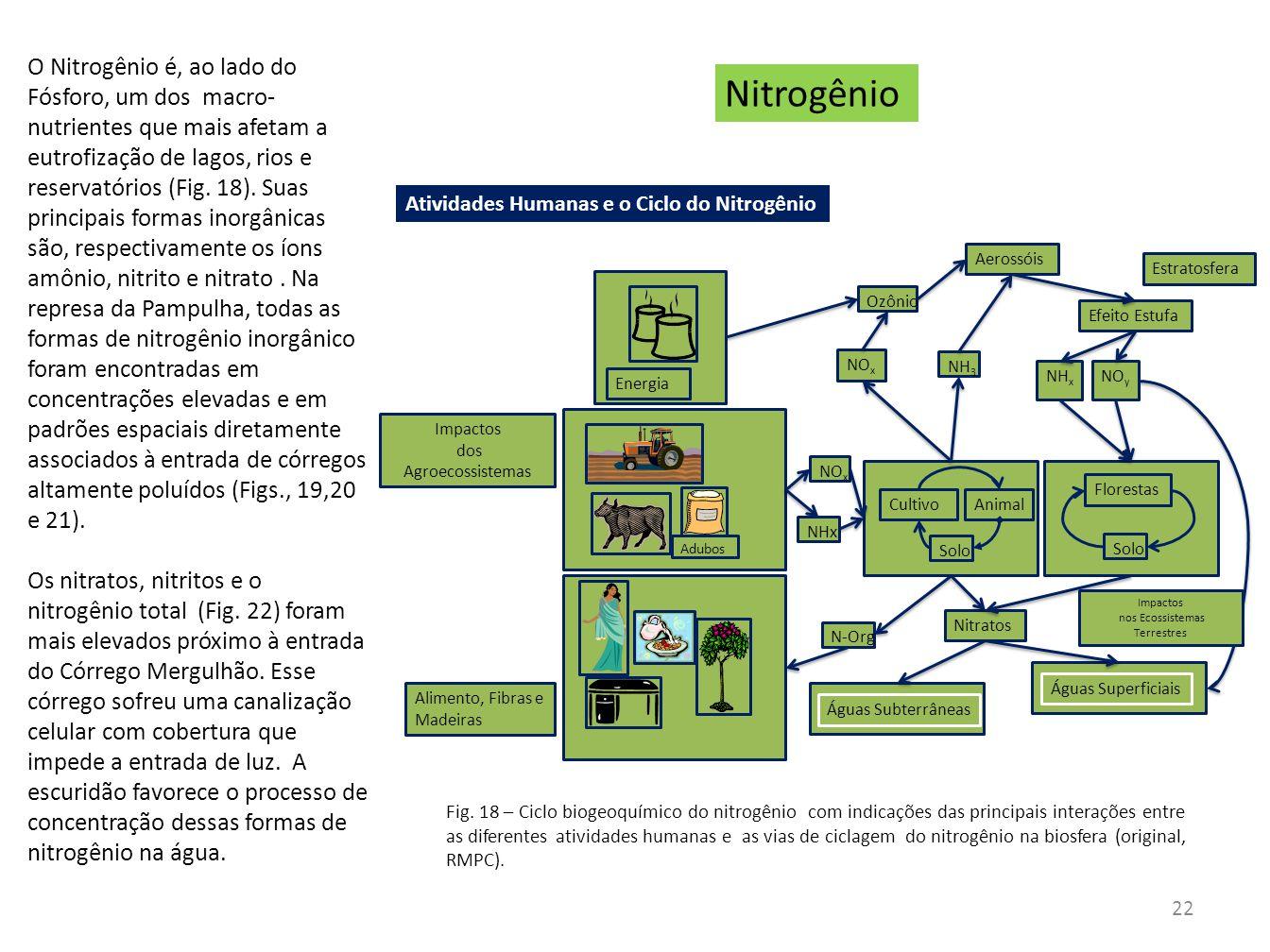 Nitrogênio CultivoAnimal Solo Florestas Solo Nitratos Adubos Alimento, Fibras e Madeiras Energia NO x Ozônio Efeito Estufa Estratosfera Águas Subterrâ