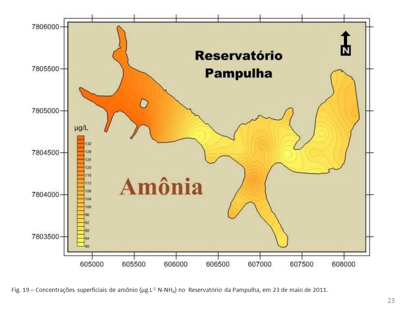Fig. 19 – Concentrações superficiais de amônio (µg.L -1 N-NH 4 ) no Reservatório da Pampulha, em 23 de maio de 2011. 23