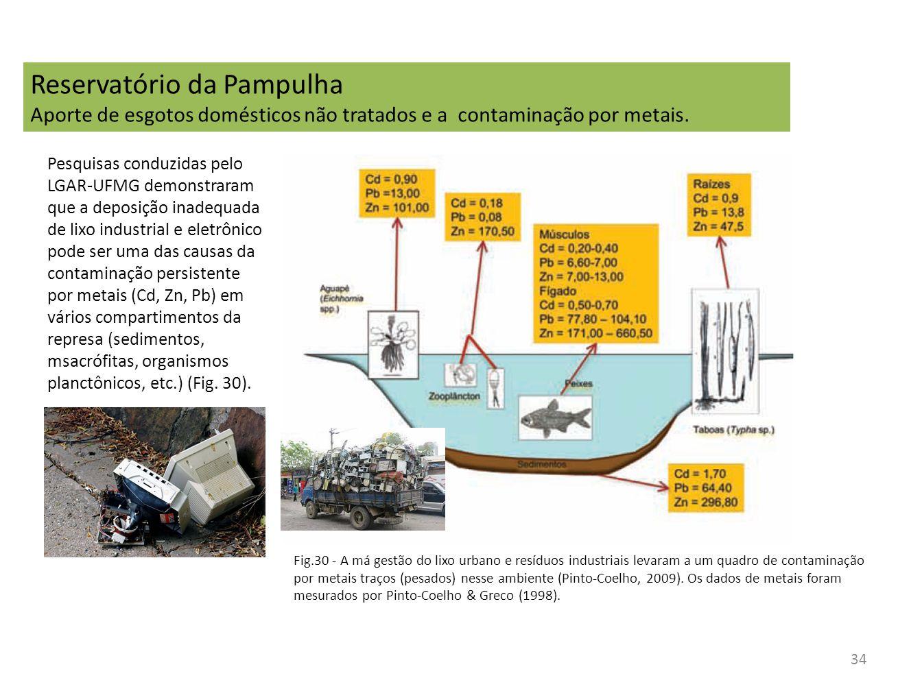 34 Fig.30 - A má gestão do lixo urbano e resíduos industriais levaram a um quadro de contaminação por metais traços (pesados) nesse ambiente (Pinto-Co