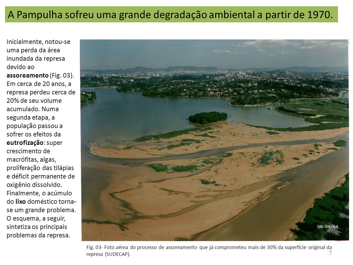 Inicialmente, notou-se uma perda da área inundada da represa devido ao assoreamento (Fig. 03). Em cerca de 20 anos, a represa perdeu cerca de 20% de s