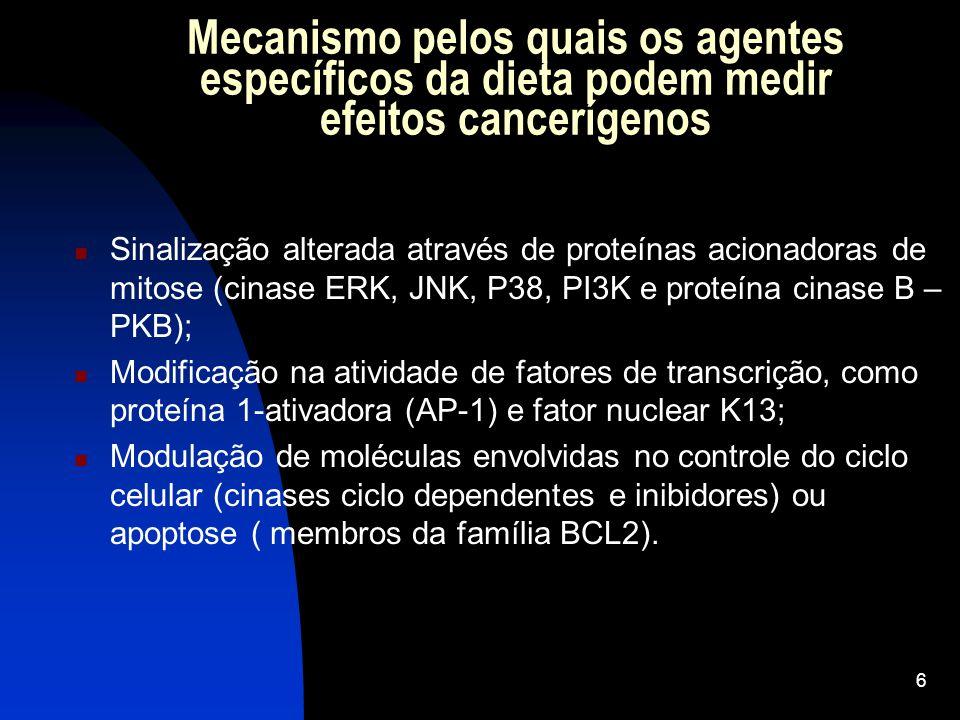 5 Quimiopreventivos Retardar estragos do DNA; Bloquear iniciação; Inibir progressão tumoral.