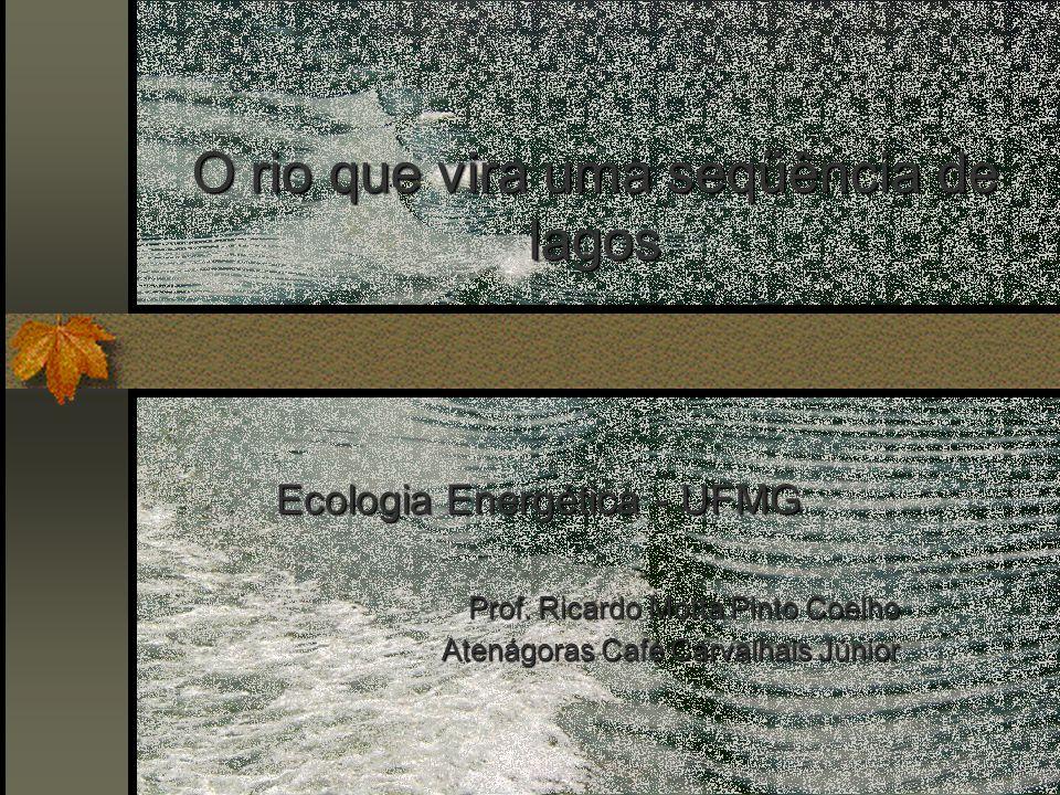 O rio que vira uma seqüência de lagos Ecologia Energética - UFMG Prof.