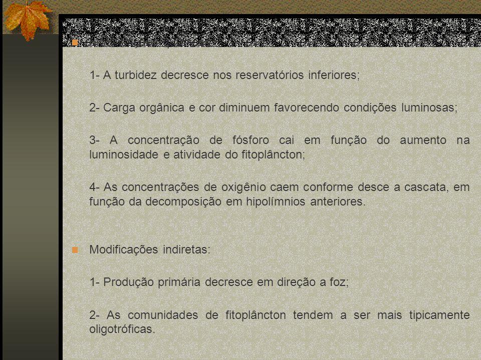 Estudo de Caso: Rio Tietê Barbosa et. al., 1999