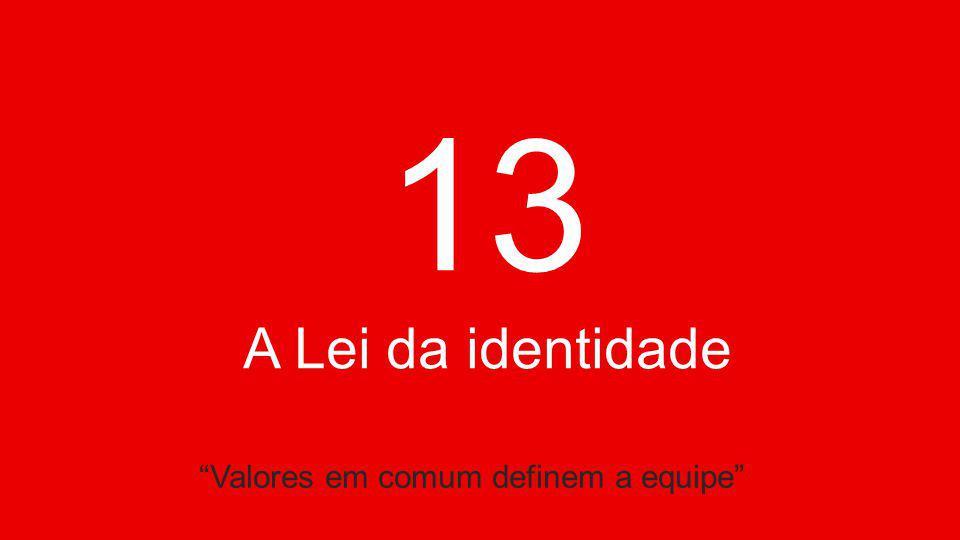 13 A Lei da identidade Valores em comum definem a equipe
