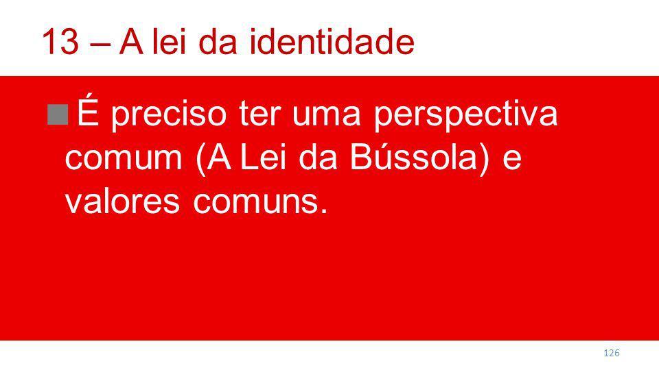 13 – A lei da identidade É preciso ter uma perspectiva comum (A Lei da Bússola) e valores comuns.