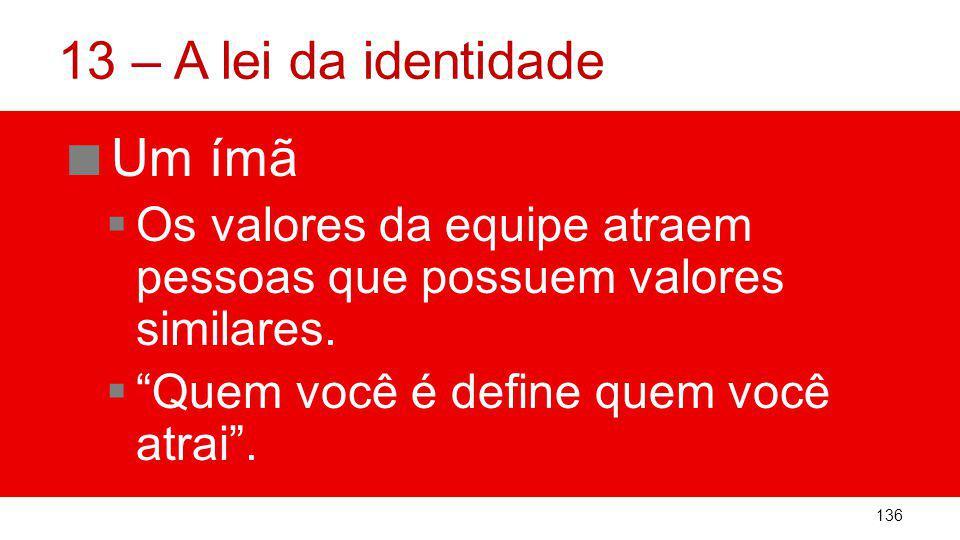 13 – A lei da identidade Um ímã Os valores da equipe atraem pessoas que possuem valores similares.