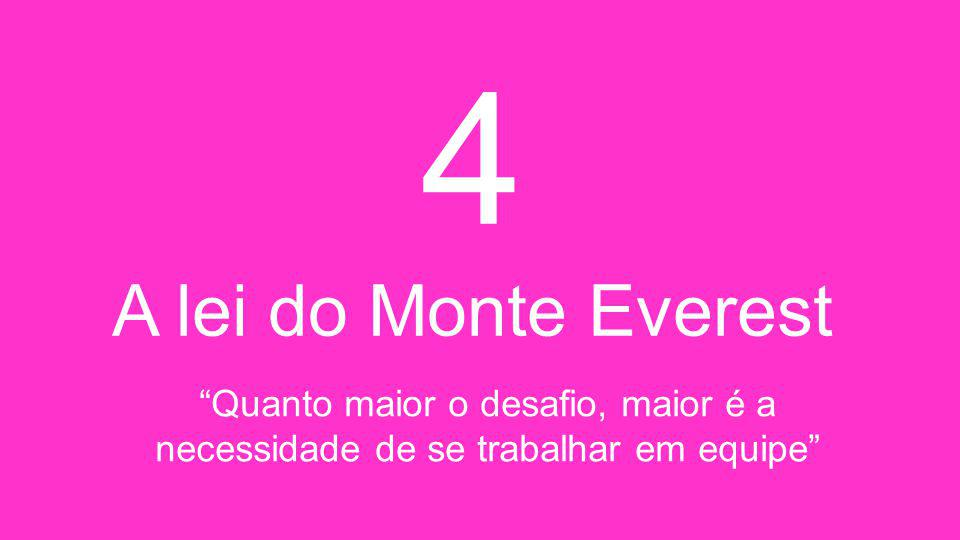 4 A lei do Monte Everest Quanto maior o desafio, maior é a necessidade de se trabalhar em equipe