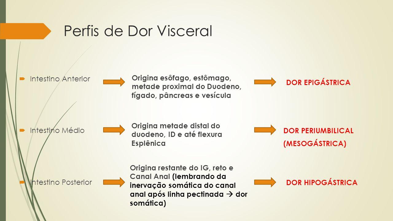 Perfis de Dor Visceral Intestino Anterior Intestino Médio Intestino Posterior Origina esôfago, estômago, metade proximal do Duodeno, fígado, pâncreas