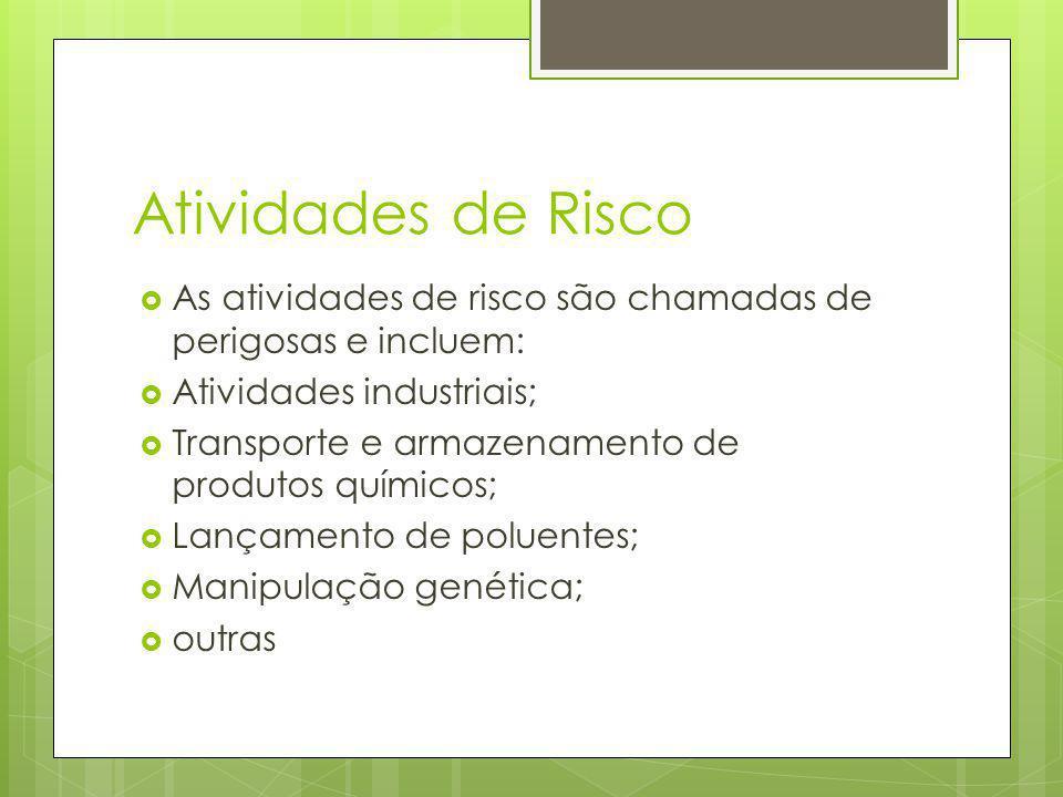 Atividades de Risco As atividades de risco são chamadas de perigosas e incluem: Atividades industriais; Transporte e armazenamento de produtos químicos; Lançamento de poluentes; Manipulação genética; outras