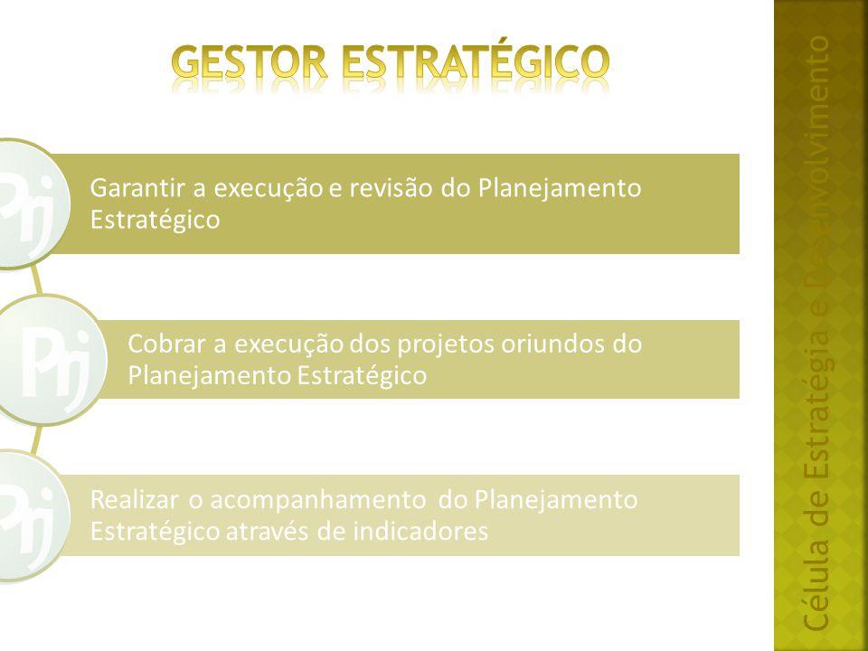 Garantir a execução e revisão do Planejamento Estratégico Cobrar a execução dos projetos oriundos do Planejamento Estratégico Realizar o acompanhamento do Planejamento Estratégico através de indicadores Célula de Estratégia e Desenvolvimento