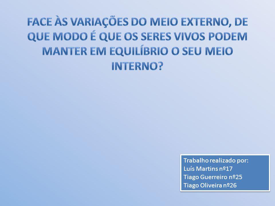 Trabalho realizado por: Luís Martins nº17 Tiago Guerreiro nº25 Tiago Oliveira nº26 Trabalho realizado por: Luís Martins nº17 Tiago Guerreiro nº25 Tiago Oliveira nº26