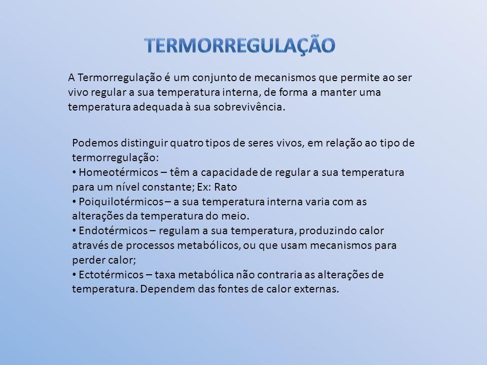 A Termorregulação é um conjunto de mecanismos que permite ao ser vivo regular a sua temperatura interna, de forma a manter uma temperatura adequada à sua sobrevivência.